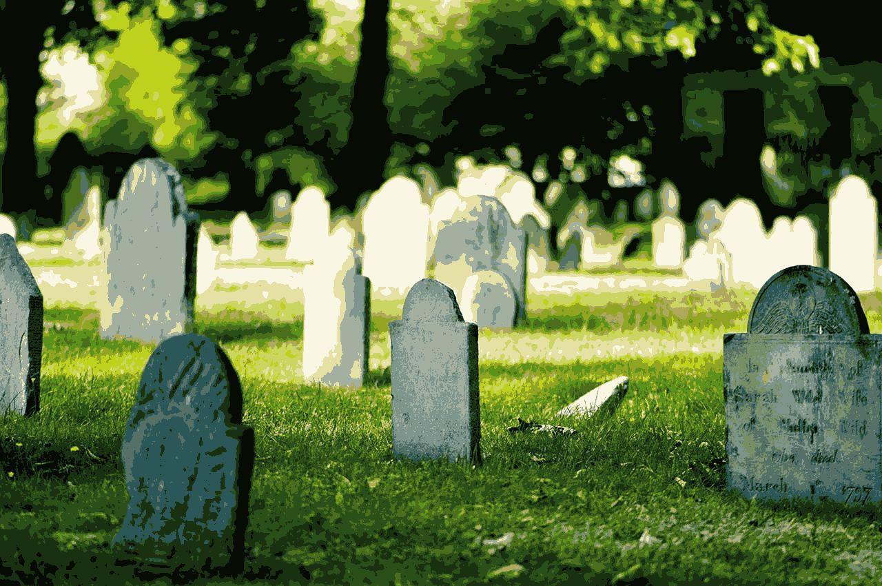 Снится кладбище беременной к чему это